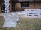 Festival of Ice 2013 at Timbercrest Senior Living Community